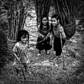 Young Children Carrying Wood Stalks in Baskets
