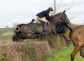 Jumping hedges at Town Farm