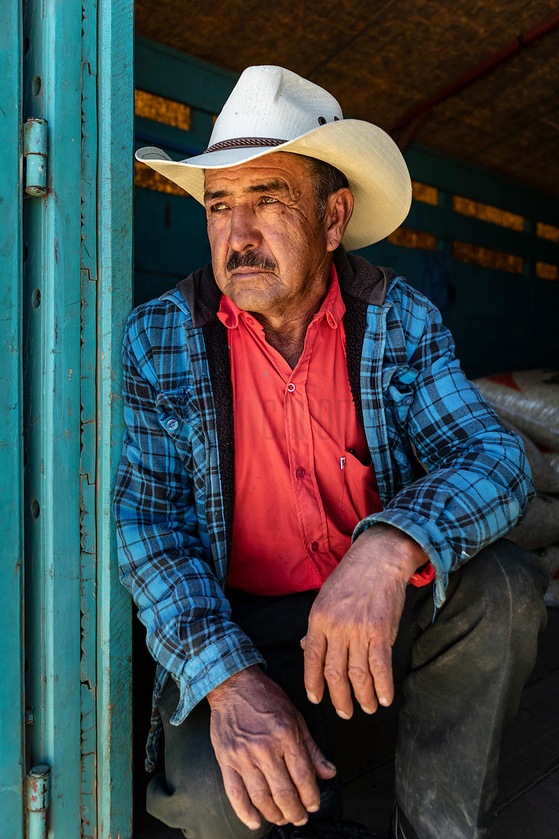 Portrait of a Farmer in the Back of his Truck