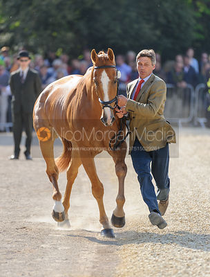 Andrew Nicholson and NEREO - Mitsubishi Motors Badminton Horse Trials 2013