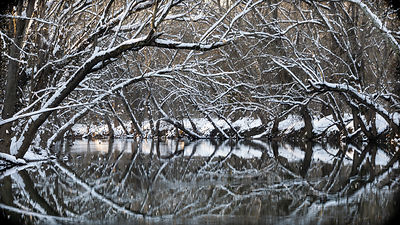 Winter Beaver Pond in Brunswick