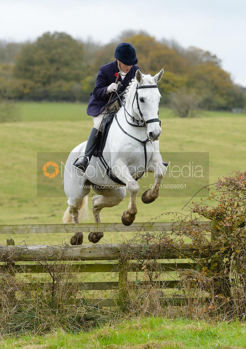 Nico Morgan Media | Jo Rutter jumping a fence at second horses - The