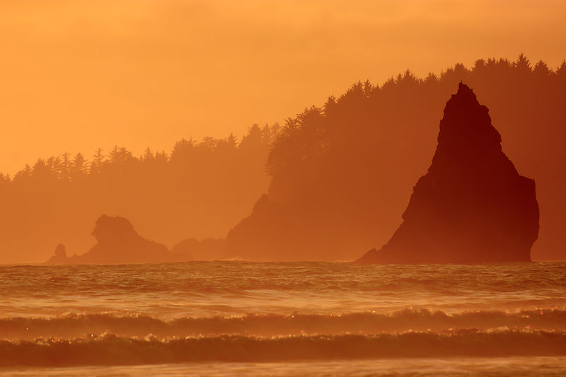 Olympic Coast Sunset