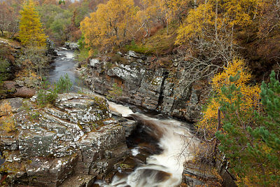 River Tromie flowing through gorge in autumn woodland. Cairngorms National Park, Scotland, UK, March.