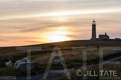 Old Light, Lundy | Client: The Landmark Trust