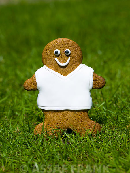 Gingerbread footballer on grass