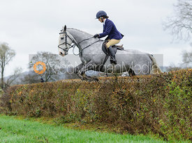 Boogie Machin jumping a hedge near East End