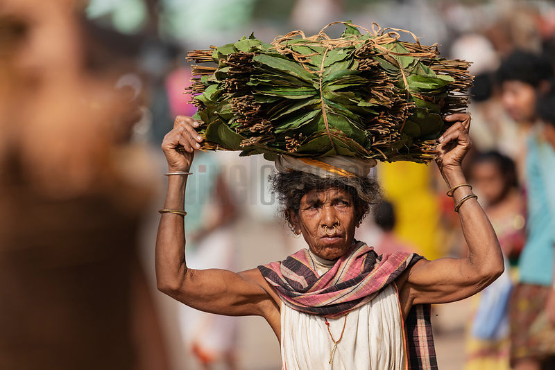 Portrait of a Woman Carrying a Bundle of Leaves on her Head