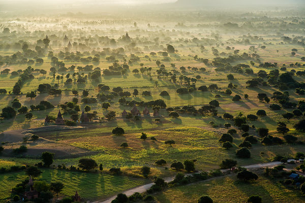 Aerial View of the Pagoda Fiels at Bagan