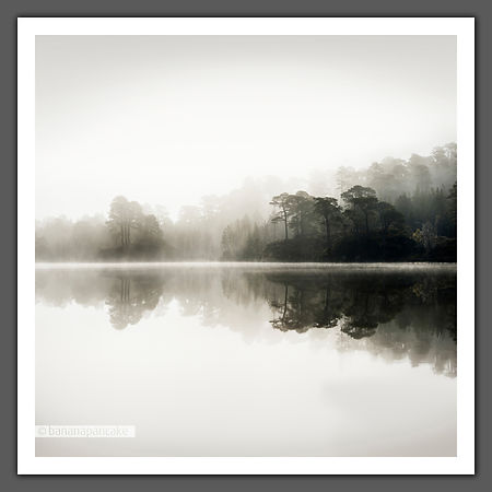 Dawn Mist, Glen Affric (BP2987B)