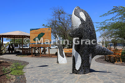 Mosaic-finished sculpture of Killer Whale or Orca (Orcinus orca) with welcome sign to San Cristobal outside San Cristobal air...