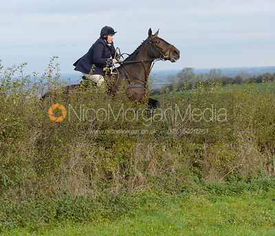 Charlotte Wright jumping a hedge near Clawson Thorns