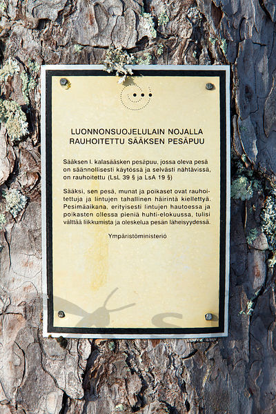 Protected Sign in the Nesting Tree of Osprey