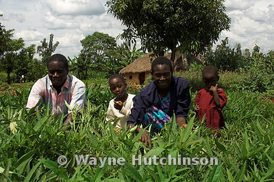 African family working in crop looking at camera Kenya Africa