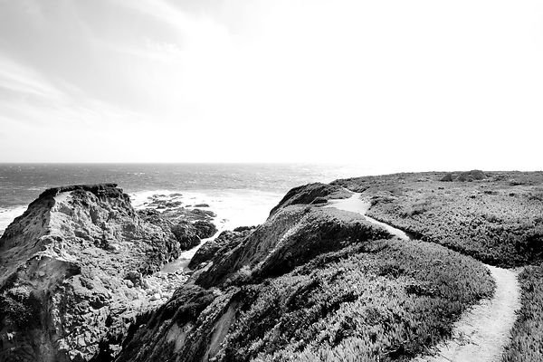 TRAIL AT SOBERANES POINT GARRAPATA STATE PARK BIG SUR CALIFORNIA BLACK AND WHITE