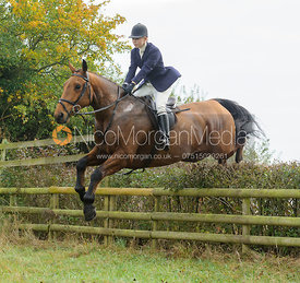 Marina Bealby jumping a hedge near Wilson's - The Cottesmore at Langham.