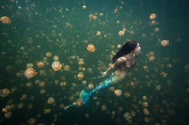 American mermaid in Jellyfish Lake, Rock Islands, Palau, Micronesia.