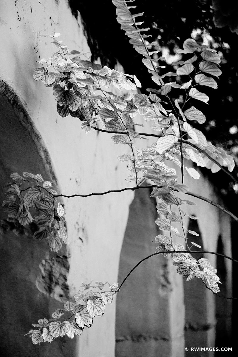 SPANISH GOVERNOR'S PALACE SAN ANTONIO TEXAS BLACK AND WHITE