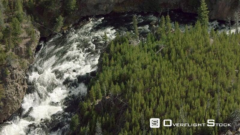 The Madison River cascades down a rocky formation in the dense lodgepole forest of Yellowstone National Park