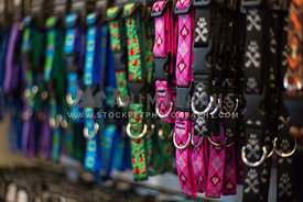 Colorful dog and cat collars hanging in a retail store
