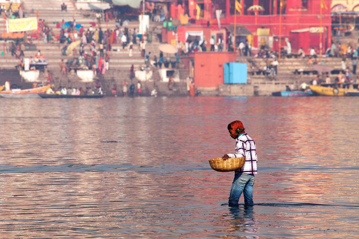 A man with a basket collects something (?) from the Ganges River, Varanasi, India.