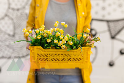 Close-up of woman holding yellow spring flower box
