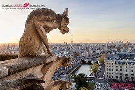 Famous gargoyle, Eiffel tower and city of Paris at sunset