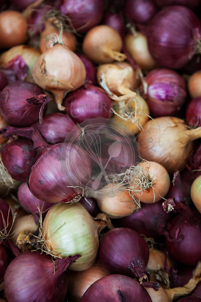 Crate of Red and white onions