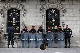 Dog scratching itself in front of police standing outside Archbishop's palace, Lima, Peru
