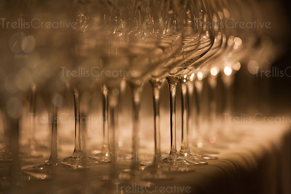 Shiny crystal wine glasses lined up at wine tasting