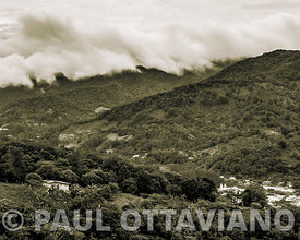 Boquete Cloud Forest 5 | Paul Ottaviano Photography
