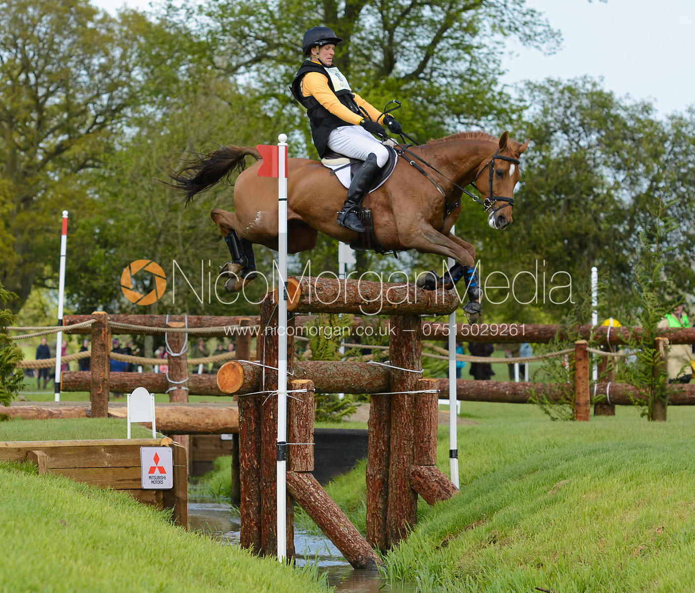 Nick Gauntlett and GRAND MANOEUVRE - Cross Country phase, Mitsubishi Motors Badminton Horse Trials 2014