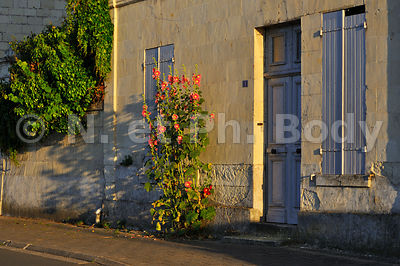 FRANCE, MAINE ET LOIRE, MONTSOREAU//France, Maine Et Loire, Loire Valley, Village Of Montsoreau