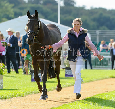 Kerry Varley and BLUESTONE LUKE - First Horse Inspection  -  Land Rover Burghley Horse Trials 2016