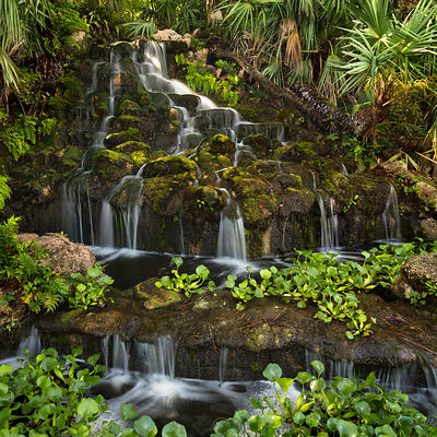 Tropical Waterfall 1