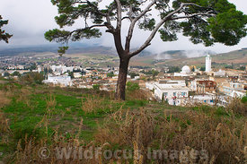 Looking toward Le Kef from near the hilltop enterance to the Kasbah. Le Kef Tunisia; Landscape