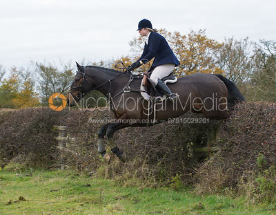 Lara Hellyer jumping a big Cottesmore hedge
