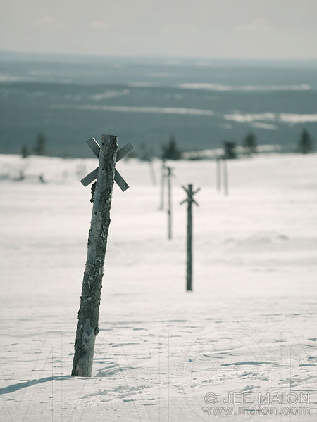 Wooden poles indicating ski trail