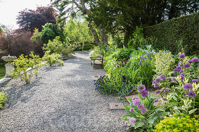 The terrace border is planted with drought tolerant, sun loving specimens including alliums, euphorbias, Cerinthe major 'Pupu...