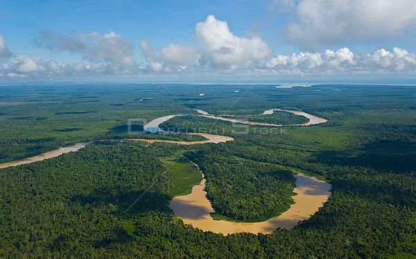 Aerial view of river meandering through lowland rainforest showing formation of ox-bow lake, Rio Sungai Kinabatangan, Sabah, ...