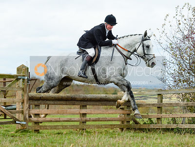 Nick Wright jumping a hunt jump at Stone Lodge. The Cottesmore Hunt at Tilton