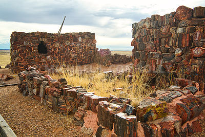 Agate House 3- Petrified Forrest, Arizona