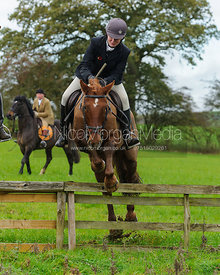 Jumping a hunt jump near Lovers' Walk - The Cottesmore Hunt at Tilton on the Hill, 9-11-13