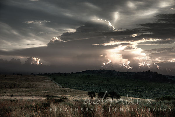 A typical highveld scene, cumulonimbus thunderclouds lit by low sunlight towering above two grass and bush covered fields div...