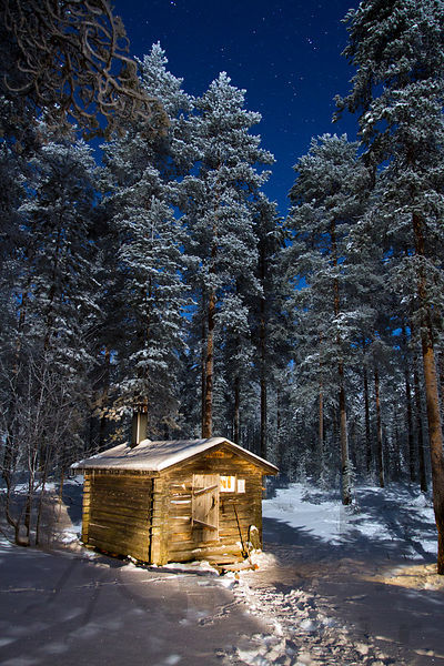 Wilderness Cabin of Koseva in December