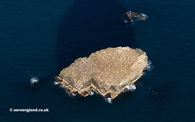 Gull Rock, Cornwall aerial photograph