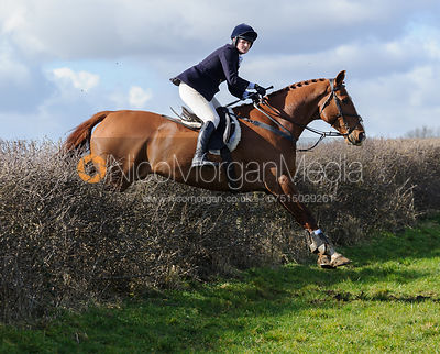 Kelly Morgan jumping a hedge behind Ladywood Lodge