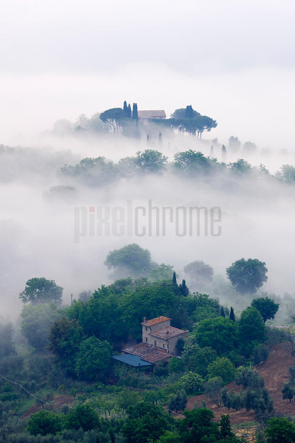Morning Mist in the Val d'Orcia, Val d'Orcia, Tuscany
