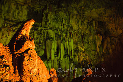 "Sterkfontein Caves: ""The Madonna"" in Wondercave"