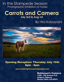 June 27 2014 - Solo gallery show, Carrots and Camera